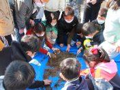 단양대가초, 수확과함께하는생태프로젝트수업실시